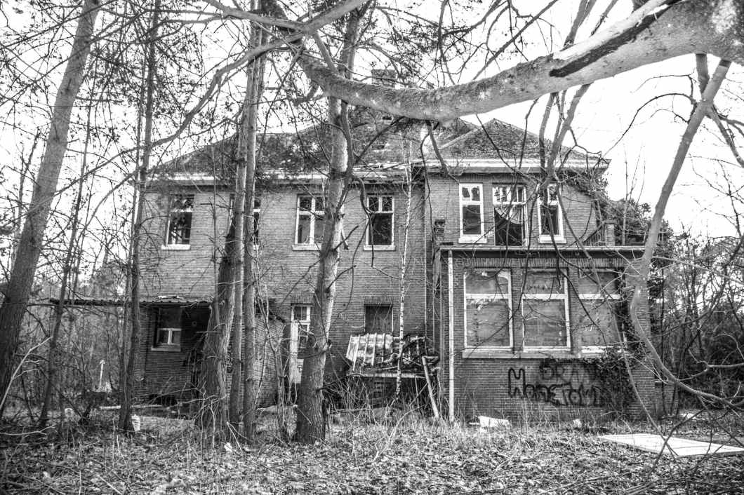 house surrounded with trees on grayscale photography